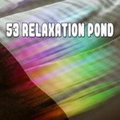 53 Relaxation Pond by Baby Sleep Sleep