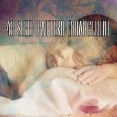 48 Sleep Pattern Enhancement de Sounds Of Nature