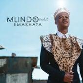Emakhaya by Mlindo