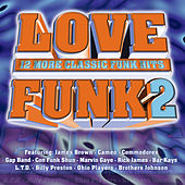 Love Funk 2 by Various Artists