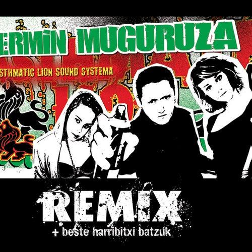 Asthmatic Lion Sound Systema Remix + Beste Harribitxi Batzuk by Various Artists