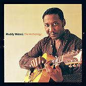 Anthology de Muddy Waters