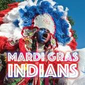 Mardi Gras Indians de Various Artists