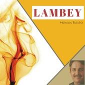 Lambey by Haroon Bacha