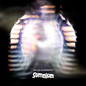 Somnium by Jacco Gardner