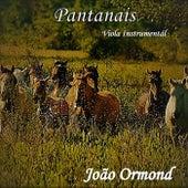 Pantanais de João Ormond