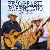 Obra Divina de Peão Brasil