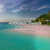 18 Relaxation Noises to Aid Calm and Relaxation de S.P.A