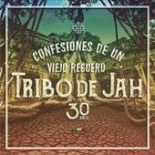 Confesiones de Un Viejo Reguero by Tribo de Jah