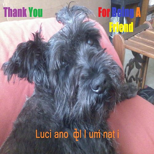 Thank You for Being a Friend by Luciano Illuminati