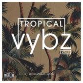 Tropical Vybz, Vol. 2 International Edition de Various Artists
