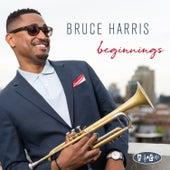 Beginnings von Bruce Harris