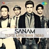 Tujhse Naraz Nahi Zindagi - Single by Sanam