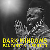 Dark Windows (acoustic) de Fantastic Negrito
