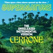 Supernature (instrumental) de Cerrone