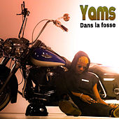 Dans la fosse by Yams