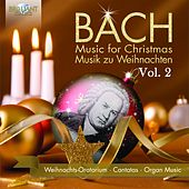 Bach for Christmas/Bach zu Weihnachten, Vol. 2 by Various Artists