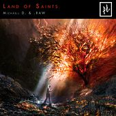 Land of Saints by Michaell D