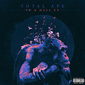 In a Haze by Total Ape