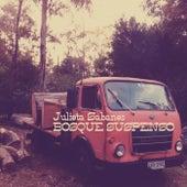 Bosque Suspenso by Julieta Sabanes