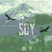 Guerrero Soy (feat. Martín Skombro) de Teorema