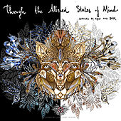 Through the altered States of Mind - EP by Various Artists