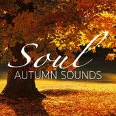 Soul Autumn Sounds von Various Artists