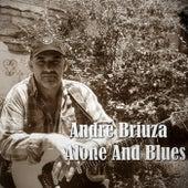 Alone and Blues de André Briuza