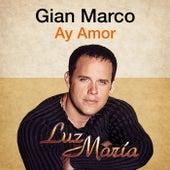 Ay Amor (Luz María) [feat. Monica Cevallos] by Gian Marco