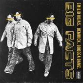Big Facts (feat. Demrick & Bodega Bamz) by Emilio Rojas