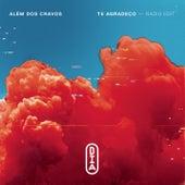 Te Agradeço (Radio Edit) by Além dos Cravos