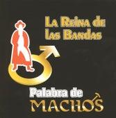 Palabra de machos by Banda Machos