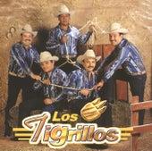 Los Tigrillos by Los Tigrillos