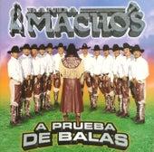 A prueba de balas by Banda Machos