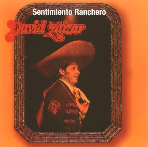 Sentimiento Ranchero by David Zaizar