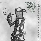 I Just Wanna Go Home (feat. Ka Boom) [Hi-Tek Remix] by Theory Hazit