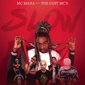 Slow de MC Maha