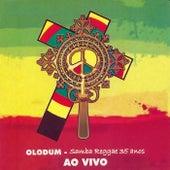 Samba Reggae 35 Anos (Ao Vivo) by Olodum
