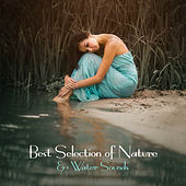 Best Selection of Nature & Water Sounds (Calming Sound Therapy for Deep Sleep & Relaxation, Meditation, Spa, Massage, Well-being) by Calming Water Consort