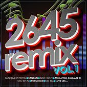 2645 (Remix, Vol. 1) de Various Artists