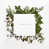 Thrive by Thrive Worship