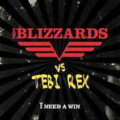 I need a win by Blizzards
