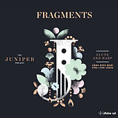 Fragments: Music for Flute & Harp (The Juniper Project) by Various Artists