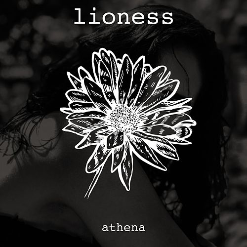 Lioness by Athena