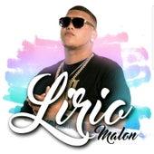 Buscame En Internet de Lirio Malon