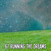 67 Running The Dreams de White Noise Babies