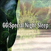66 Special Night Sleep de White Noise Babies