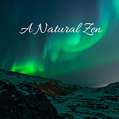 A Natural Zen by Nature Sounds (1)