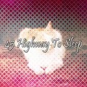 45 Highway To Sleep de Sleepicious