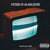 Pictures of an Adolescent von Various Artists